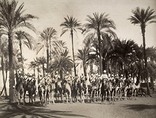 Egypt British Camel Corps Nmounted Soldiers Of The British Colonial Army In Egypt Photograph C1900 Poster Print by (18 x 24)