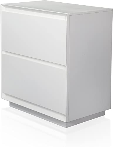 Furniture of America Zeden Modern White 2-Drawer Nightstand