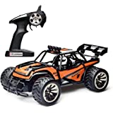 Remote Control Car,High Speed Off Road Monster RC Truck - 1/16 Scale 2WD 2.4Ghz Radio Controlled Electric Truggy - Best Christmas Gift for Kids and Adults(Orange)