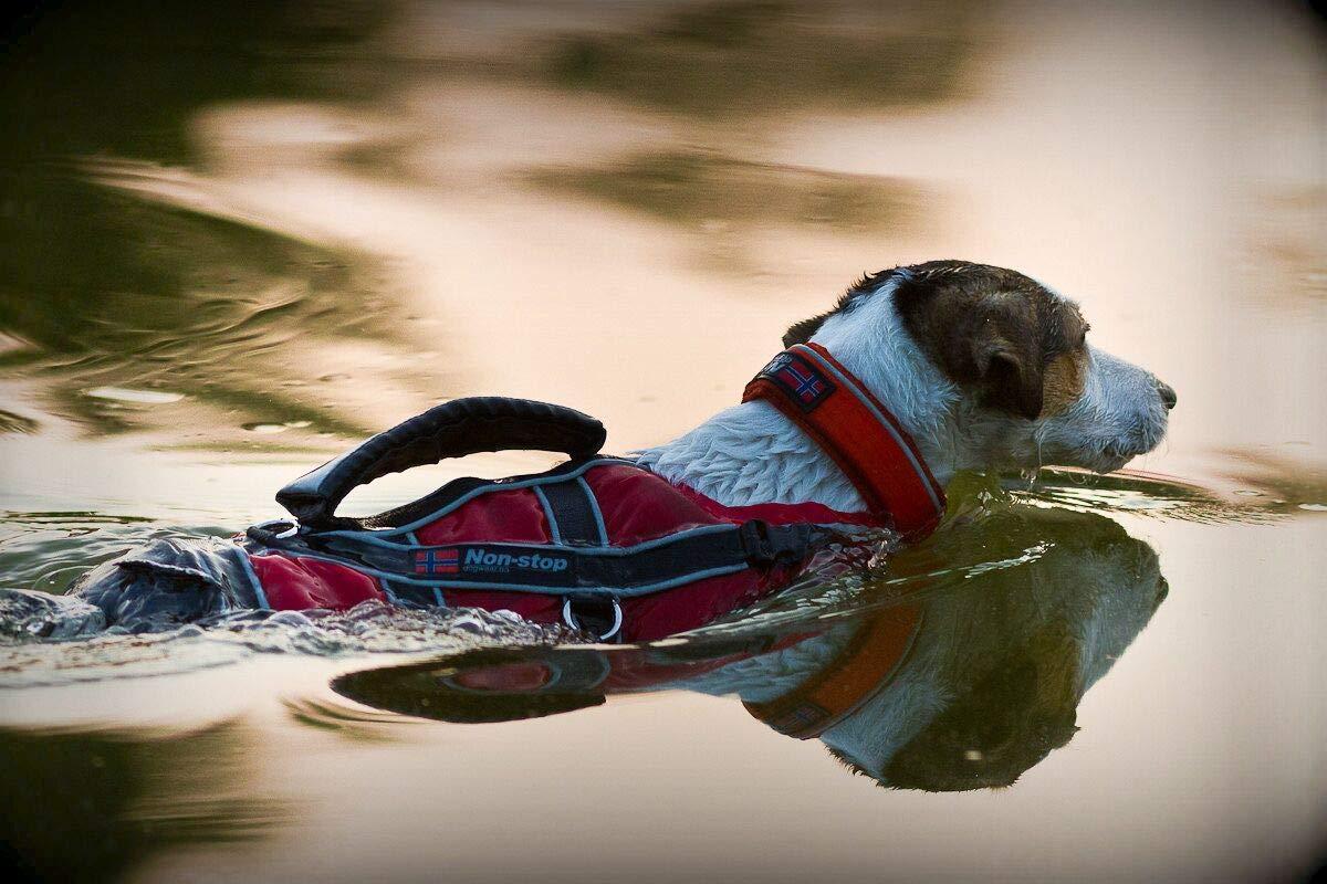 NON-STOP DOGWEAR Swimming Vest 3