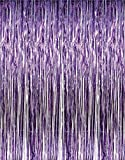 Metallic Purple Foil Fringe Curtains (2-Pack, Purple)