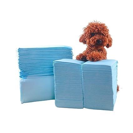 Almohadilla de urinario para perros Ultra absorbente No tejido A prueba de fugas Pañales de entrenamiento