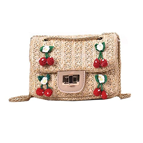 Amazon.com: Bolsa de hombro con diseño de paja de poliéster ...