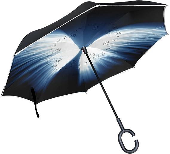 icyflower - Paraguas plegable con rayas reflectantes y bonita personalidad de pie doble capa: Amazon.es: Jardín