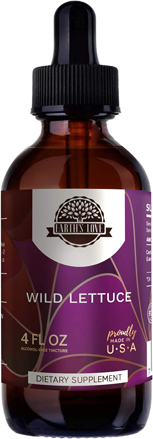 Earth s Love – Wild Lettuce B120 Alcohol-Free Herbal Extract Tincture, Super-Concentrated Organic Wild Lettuce Lactuca virosa Dried Herb 4 Fl Oz