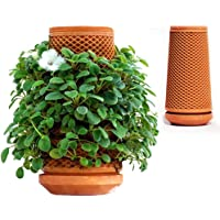 "Happyworker 9"" Self Watering Pot for Indoor Plants Inside Out Planter Decorative Flowers Herbs Home Pot"