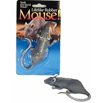 2 Novelty Real Looking Fake Rubber Mouse- Halloween: Toys & Games [5Bkhe0305925]