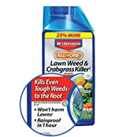 BioAdvanced 704140 All-In-One Lawn Weed and Crabgrass Killer Garden Herbicide, 32...