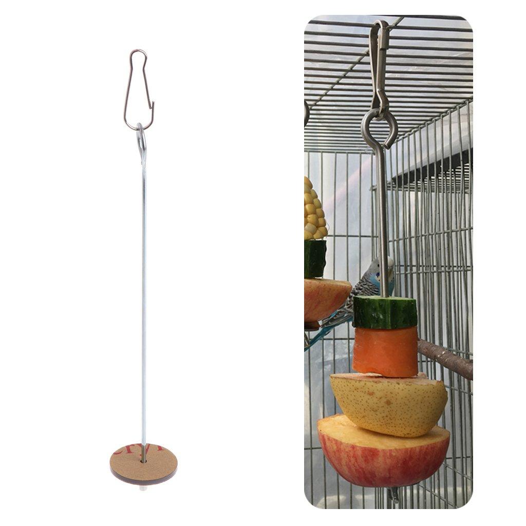 Girasool 1PC perroquets Oiseaux Nourriture Support Support Support en Acier Inoxydable pour Fruits et légumes pour Cages Spear Filetage brochettes Viande