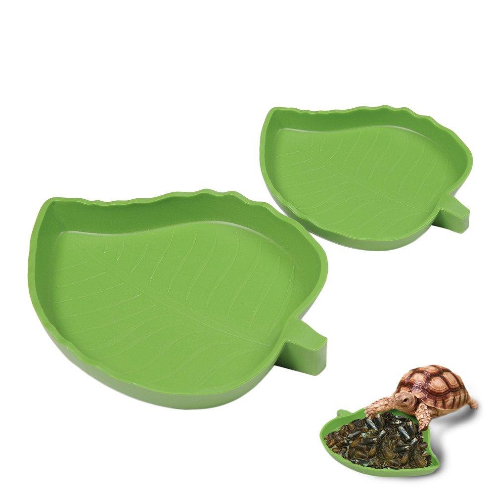 TAONMEISU™ Plat à Eau pour Reptiles Amphibiens en Forme de Fouille Verte de Haute Qualité Hjuns