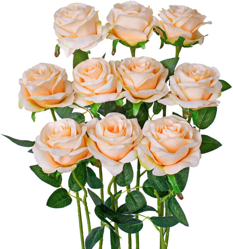 Luyue Artificial Silk Rose Flower Bouquet Wedding Party Home Decor, Pack of 10-Light Champange