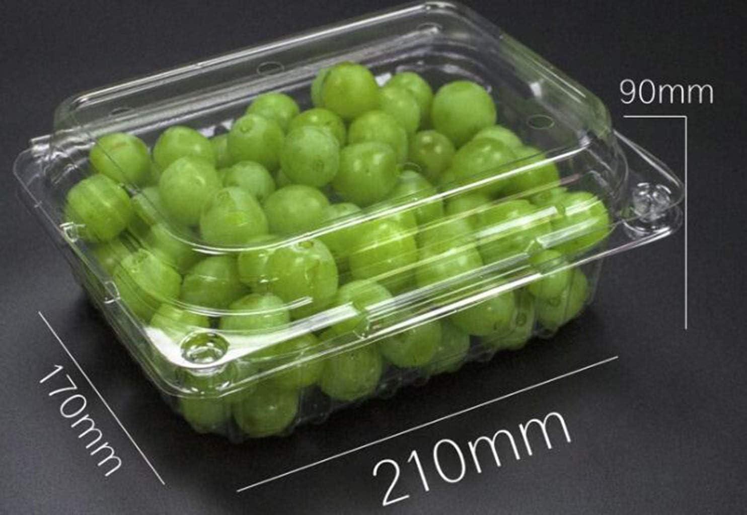 Desechable contenedor de caja de embalaje de la fruta de plástico ...