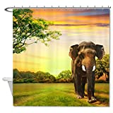 HANHAOKI Elephant on Sunset Pattern Country Style Soft Polyester Fabric Bathroom Shower Curtain liner for Kids 66''x72''