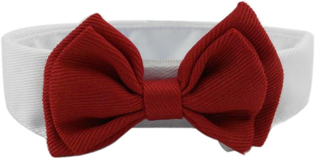 Diyafas 2 x Corbata de Mascota Collar Ajustable de Algodón ...