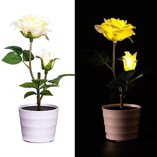 Mmlsure Mmlsure Lampe De Sol Solaire A Led Avec 2 Roses Solaires