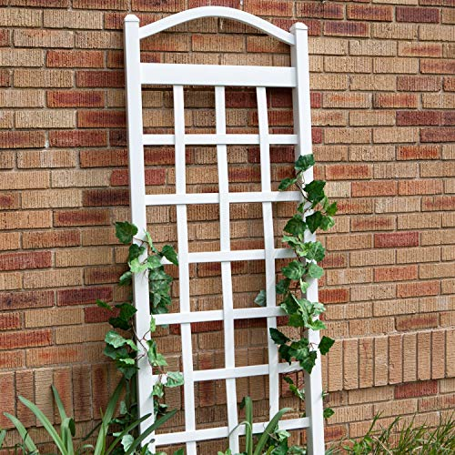 Arch Top Wall Trellis - StarSun Depot 6 Ft White Vinyl Garden Trellis with Arch Top with Ground Mount Anchors