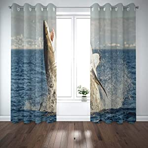 Shorping 52X84 Inch 3D Window Curtains, Privacy Window Curtain Great White Shark in Attack on Seal Hunting of South Africa Carcharias Window Blackout Curtains for Bedroom,2 Pc