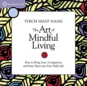 The Art of Mindful Living Speech
