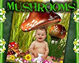C1 Mushroom Digital Photo Backgrounds Backdrops Templates Kid Baby Props Spring