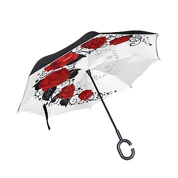 ISAOA Paraguas Plegable de Doble Capa, Paraguas de Auto de pie y ...