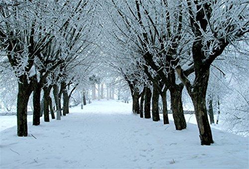 (AOFOTO 10x7ft Christmas Xmas Snow Forest Trail Santa Claus Path Beautiful Winter Wonderland Background Photography Backdrop Kid Adult Artistic Portrait Photo Studio Props Video Drape Wallpaper)