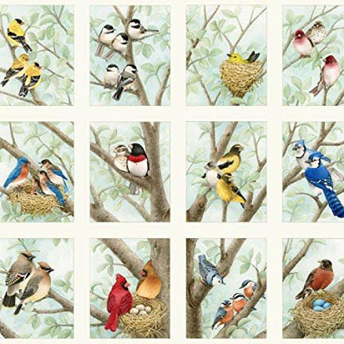 - Elizabeth's Studio Beautiful Birds Songbirds Quilt Fabric 24