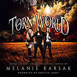 The Torn World