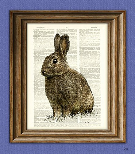 RABBIT Little Bunny Foo-Foo beautifully upcycled vintage dictionary page book art print