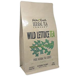 Wild Lettuce Leaf Tea - Pure Herbal Tea Series by Palm Beach Herbal Tea Company (30 Tea Bags) 100% Natural [Packaging May Vary]