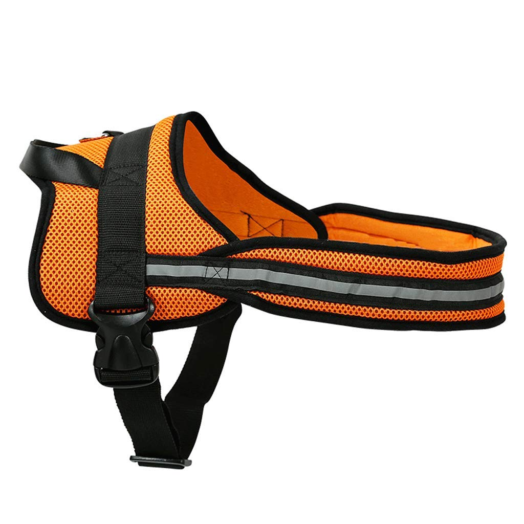 orange M orange M Vest-Style Pet Chest Strap with golden Hair Satsuma and Other Large and Medium Dog Collars Can Be Reflective (color   orange, Size   M)