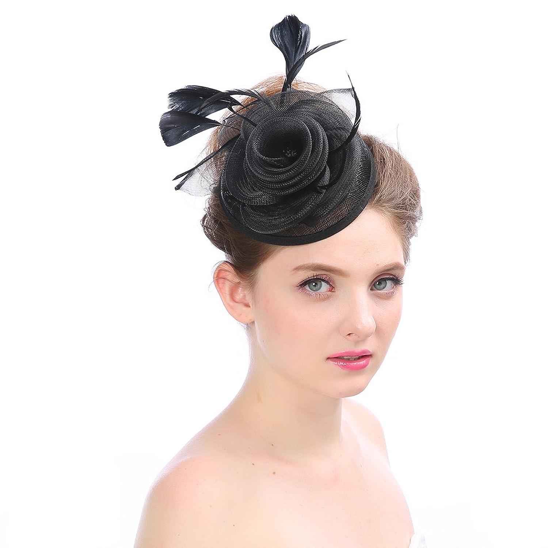 2bf5ffc75ff Lusiyu Fashion Women s Flower Feather Mesh Net Fascinator Headwear With  Hair Clip