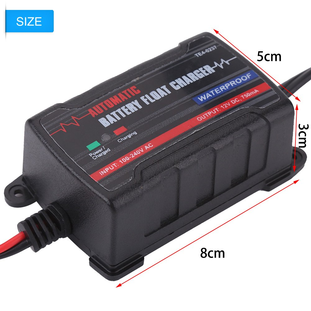 Qiilu 0.75A 6V 12V Automatic Battery Trickle Charger Maintainer for Car Motor ATV RV (American Plug) by Qiilu (Image #5)