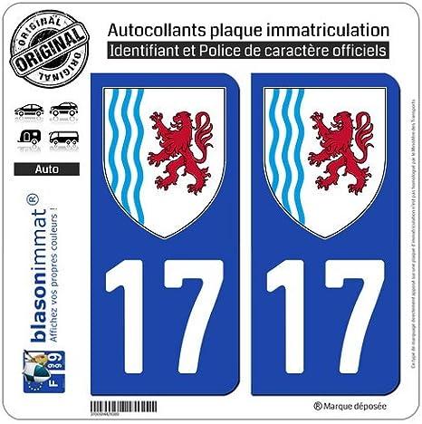 Amazon.es: blasonimmat 2 Pegatinas matrícula Auto 17 Nouvelle-aquitaine – Logotipo