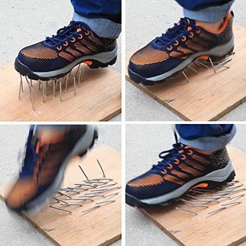 Scarpe Da Donna Ottimali Scarpe Da Lavoro Comp Punta In Acciaio Scarpe Arancione Blu