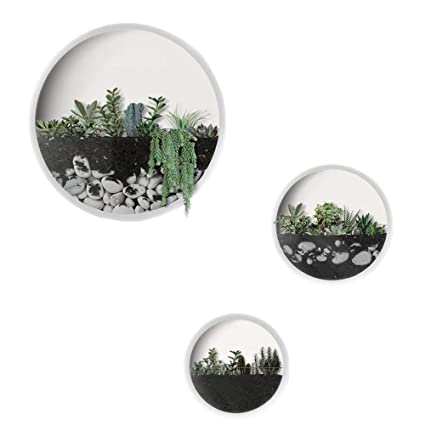 Amazon Com Modern Indoor Succulent Planter Metal Iron Circle Round