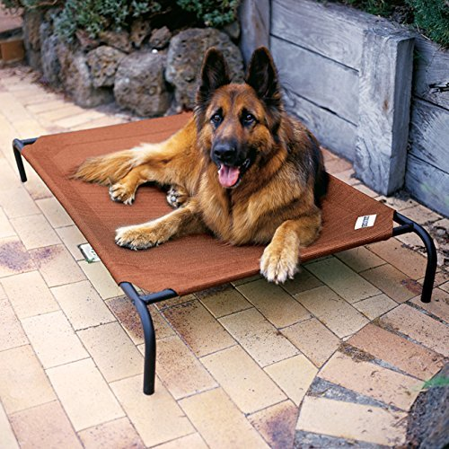 Coolaroo-Elevated-Indoor-Outdoor-Large-Pet-Bed-for-Large-or-Small-Dogs-and-Cats-Beds-Terra