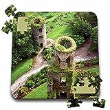Danita Delimont - Castles - Towers, Blarney Castle, County Cork, Ireland - EU15 MGL0002 - Miva Stock - 10x10 Inch Puzzle (pzl_137453_2)