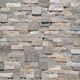 Koni Stone Citali Series Laguna 7 sq. ft. Panel 6 in. x 24 in. x 0.40 in. - 0.80 in. Natural Stone