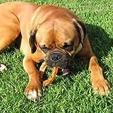 Bully Stick Rings for Dogs (10 Pack) - Natural Bulk