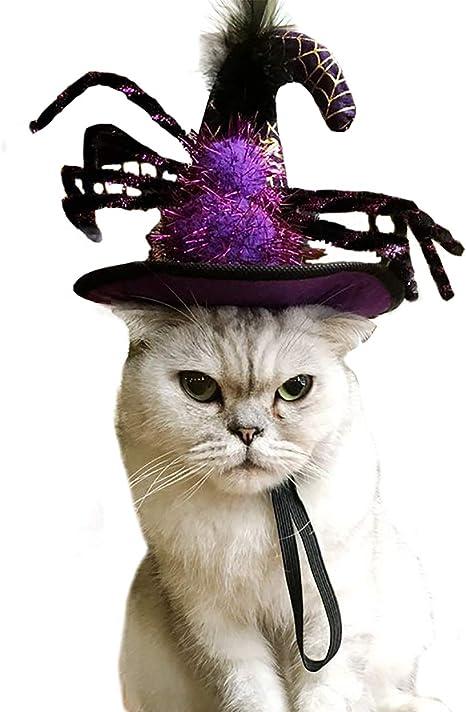Iris Sprite Disfraz de Murciélago de Halloween para Gatos ...