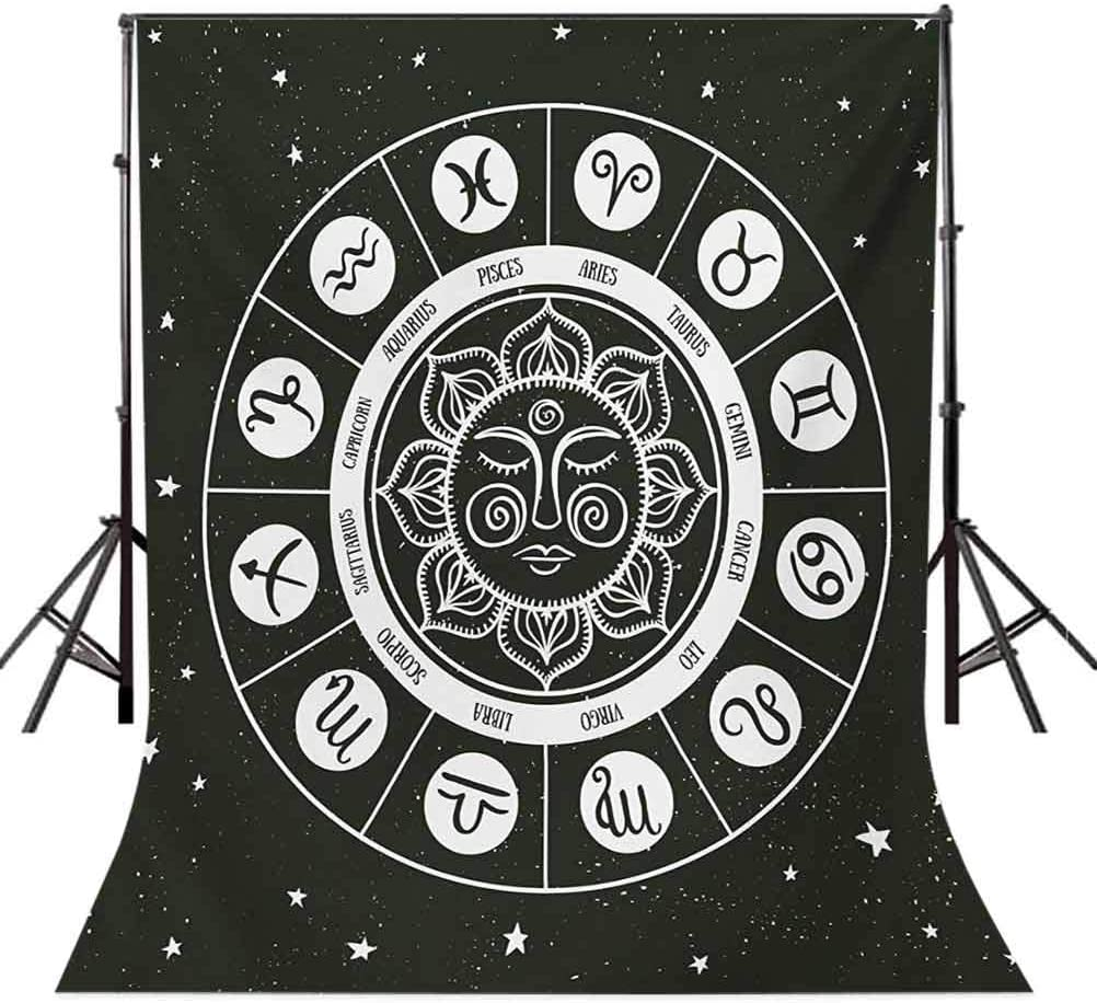 Zodiac 10x15 FT Backdrop Photographers,Style Horoscope Wheel Showing Zodiac Signs with Celestial Backdrop Background for Baby Shower Bridal Wedding Studio Photography Pictures Charcoal Grey White