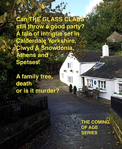 THE GLASS CLASS (JIGSAW Part of The Coming of Age series Book - Glasses Jigsaw