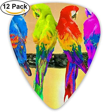 Black Large Poll Parrot Bird Acoustic Gauge Guitar Picks 12 Packs,0.46/0.73/0.96 Mm Guitar: Amazon.es: Instrumentos musicales