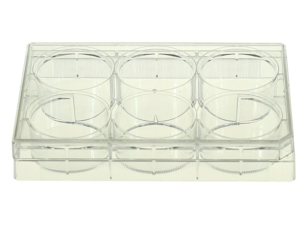 Nest Scientific 703011 Polystyrene 6 Well Cell Culture Plate, Flat Bottom, Non-Treated, Sterile, Clear, 1 per Pack, 50 per Case (Pack of 50)