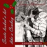 Santa Looked a Lot Like a Cowboy: A Holiday Novella | Jenny Hammerle