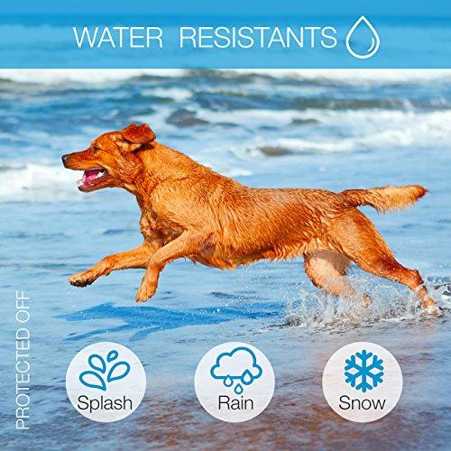 DogRook Dog Bark Collar- Humane Anti Barking Training Collar - Vibration No Shock Dog Collar - Stop Barking Collar for Small Medium Large Dogs - Best No Barking Dog Collar
