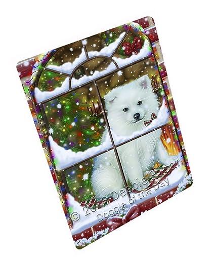 Amazon.com  Please Come Home For Christmas American Eskimo Dog ... c22621604