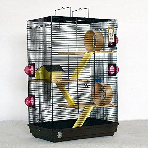 Cage furet les meilleurs mod les jardingue - Cage deco pas cher ...