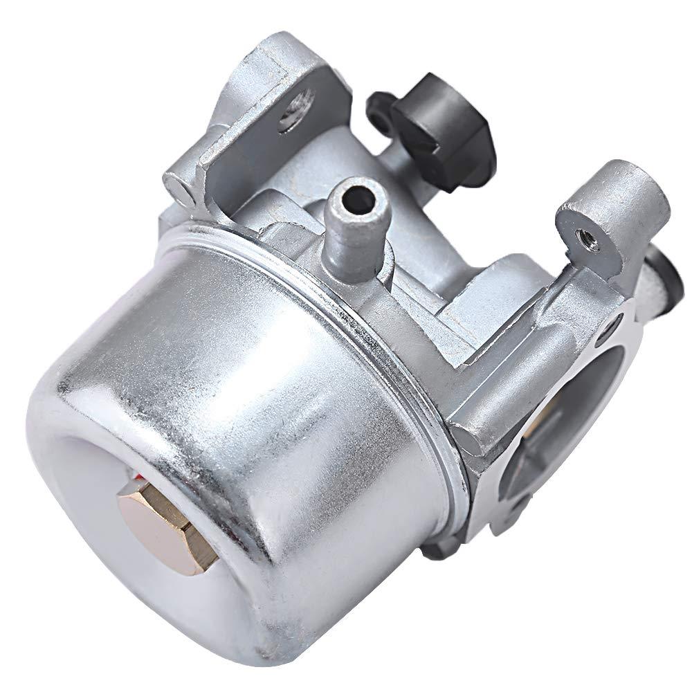 Anxingo 799866 Carburador para Briggs & Stratton 794304 796707 ...