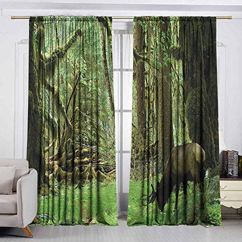 - VIVIDX Small Window Curtains,Rainforest,Roosevelt Elk in Rainforest Wildlife National Park Washington Antlers Theme,Rod Pocket Drapes Thermal Insulated Panels Home décor,W55x72L Inches Green Brown